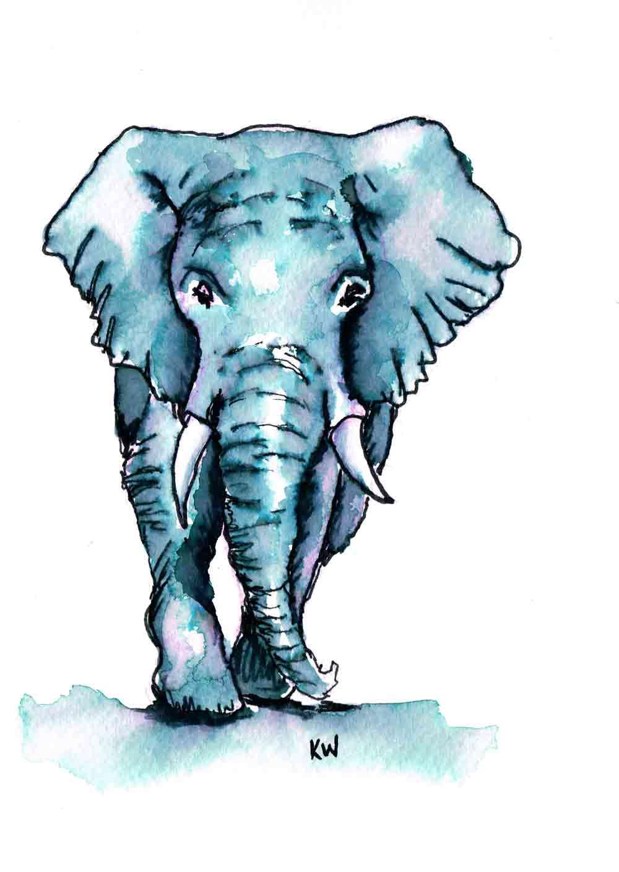 elephant-1-for-course-ear-splash-fixed-kw.jpg