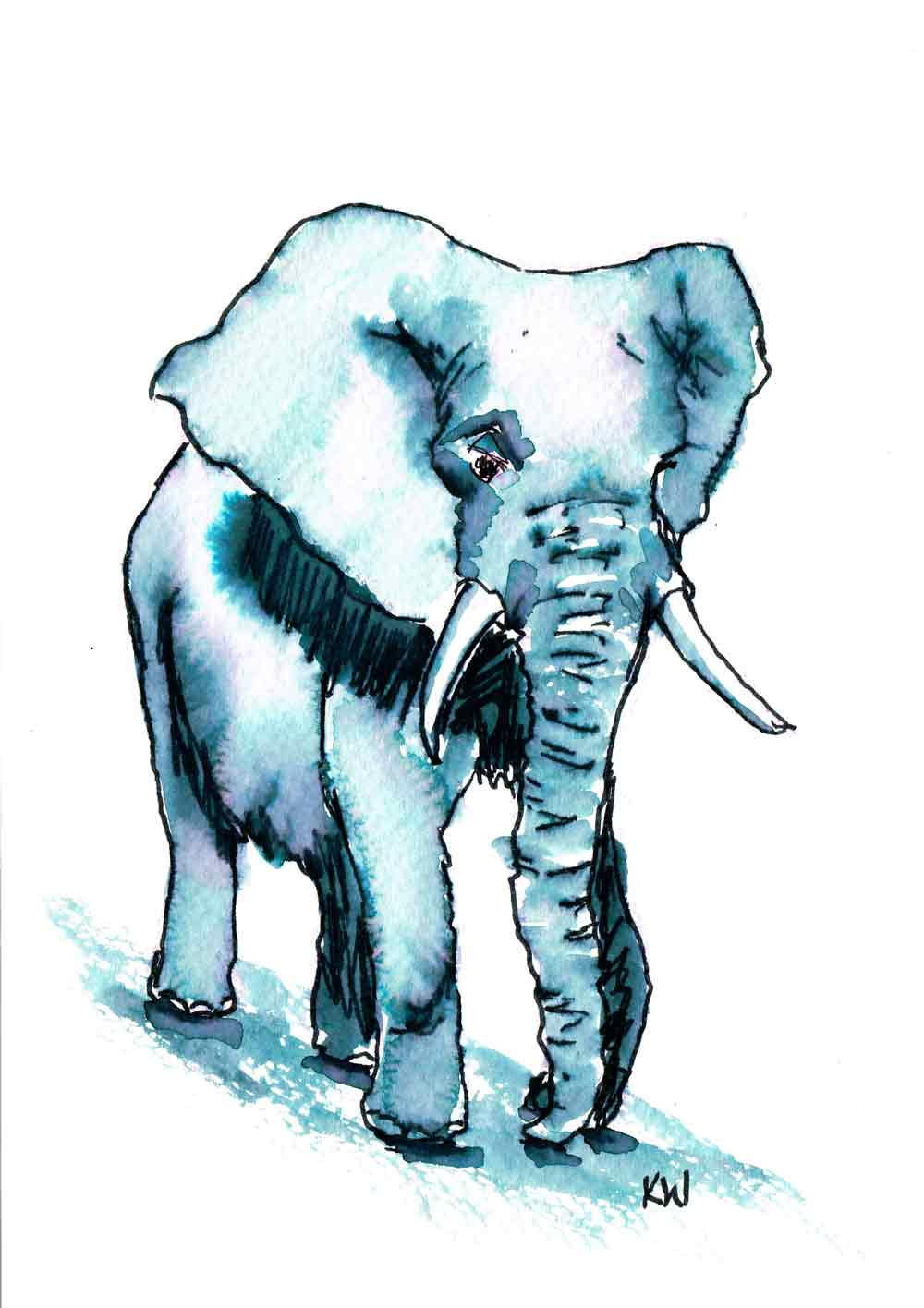 elephant-walking-forward-angle-kw.jpg