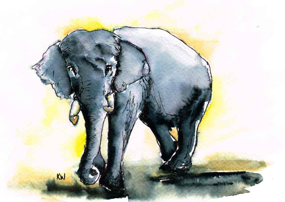 "Elephants no 2 - (Watercolour marker on paper, 5.8""x 8.3"")"