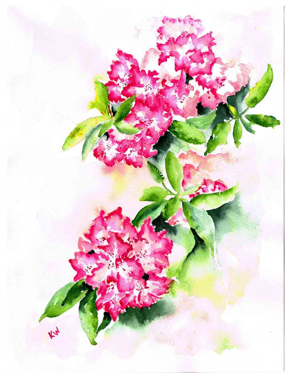 "Rhododendron Gardens no 1 (Watercolour on paper, 9""x 12"""