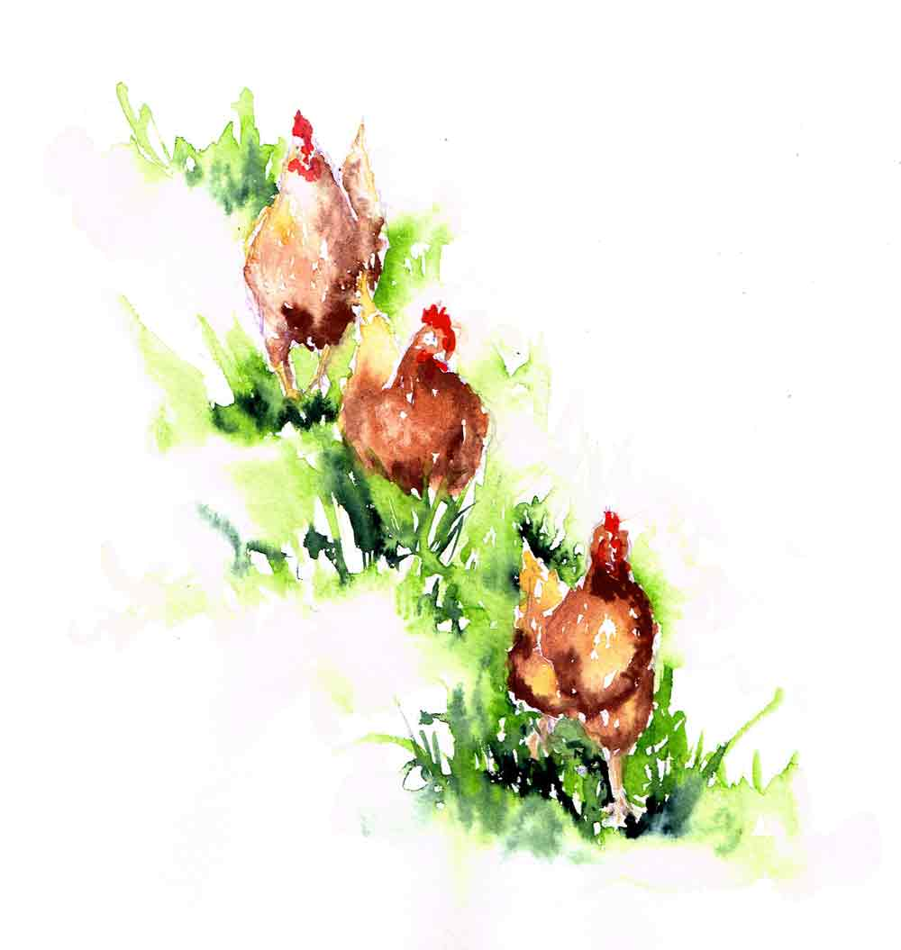"Rainbow Roosters no 9 - Follow the Leader (Watercolour on Paper 8""x 10"")"