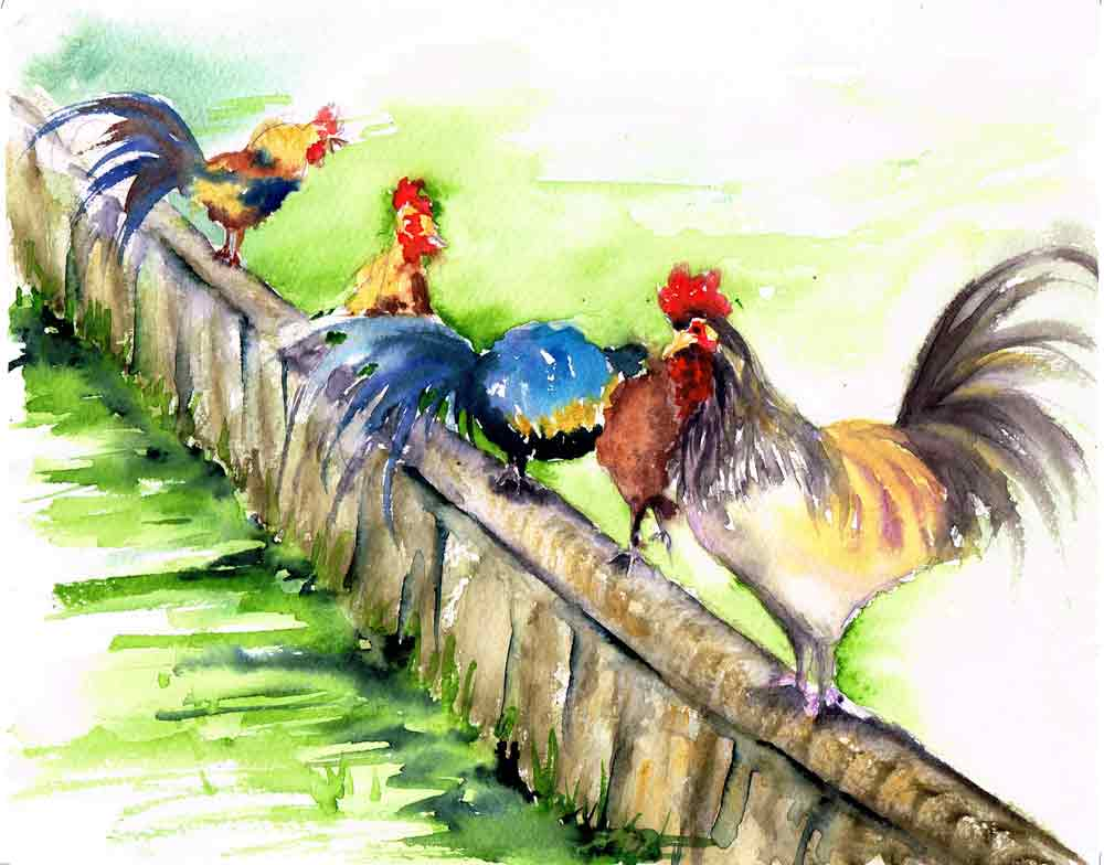 "Rainbow Roosters no 8 - Morning Chat (Watercolour on Paper 8""x 10"")"