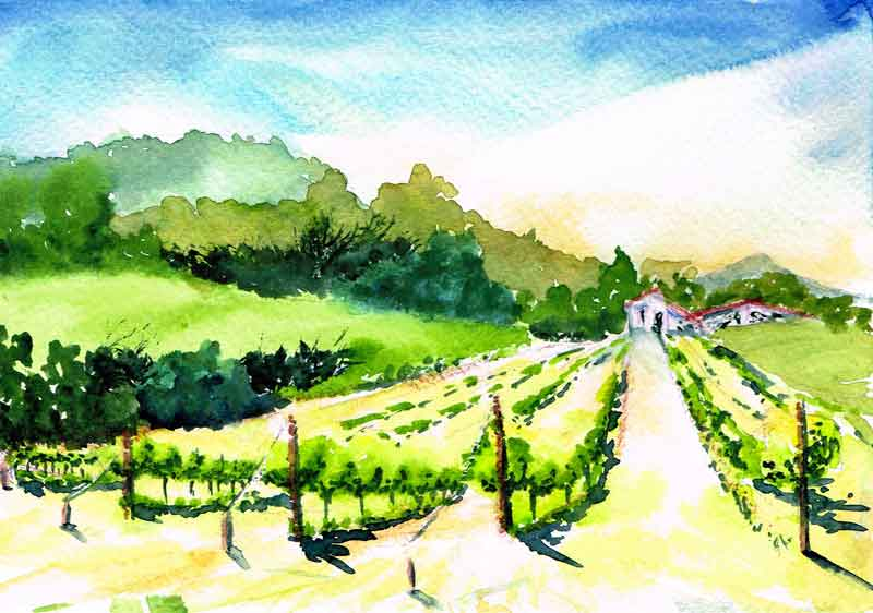 Vineyards-with-house-and-slope-kw.jpg