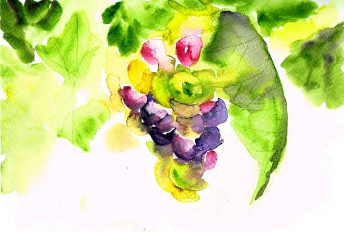 Vineyards no 8 - Juicy (Watercolour on Paper A5)