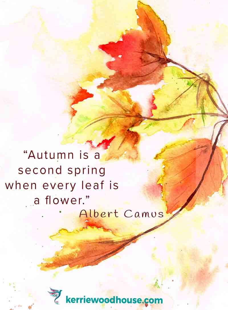 Autumn-is-a-second-spring-where-every-leaf-is-a-flower-Camus-kw.jpg