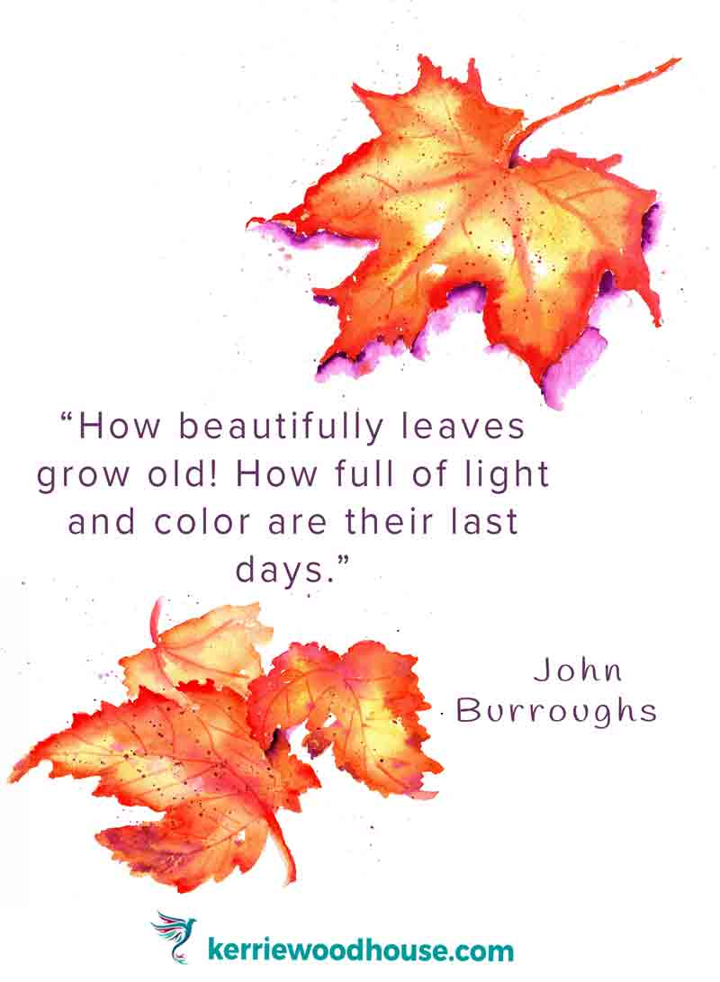 how-beautifully-leaves-grow-old-john-burroughs-kw.jpg