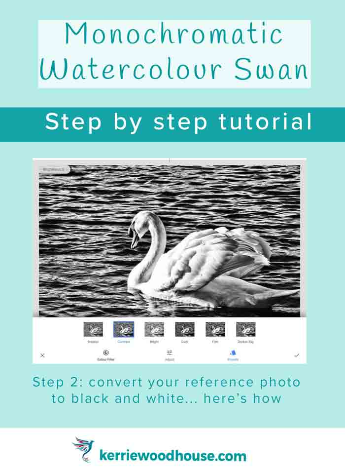 monochromatic-watercolour-swan-step-by-step-tutorial-step-2-kw.jpg