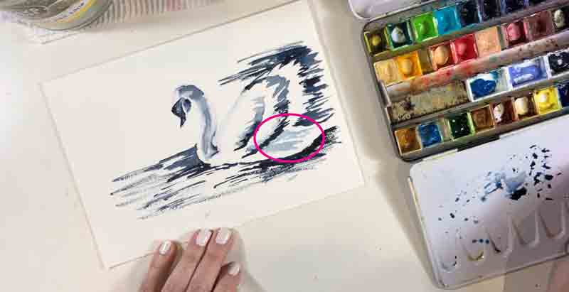 I used the lightest value to begin adding the shadow cast by the wing over the back of the swan's body.