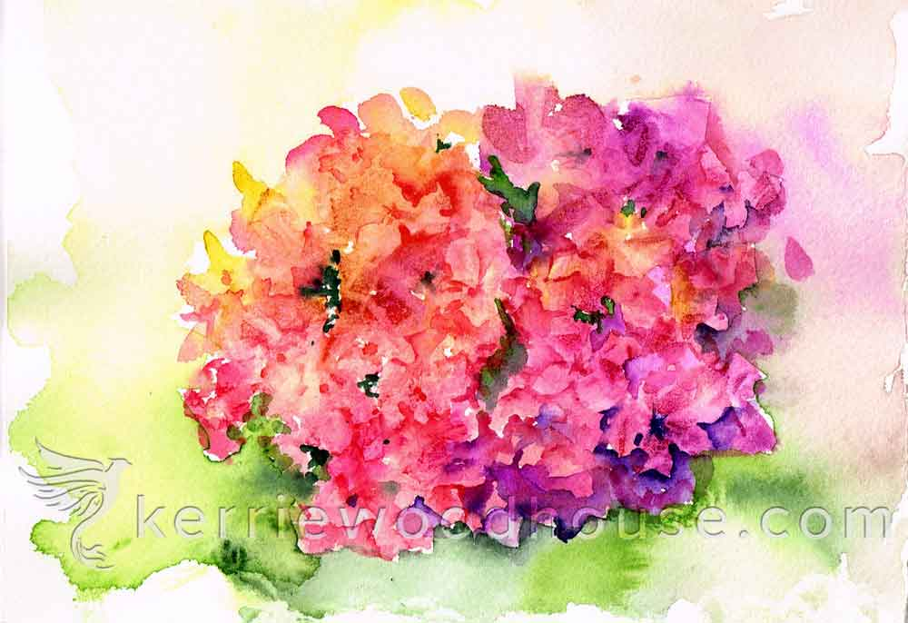 Hydrangeas no 4- Colourful Clusters (Watercolour on Paper A5)