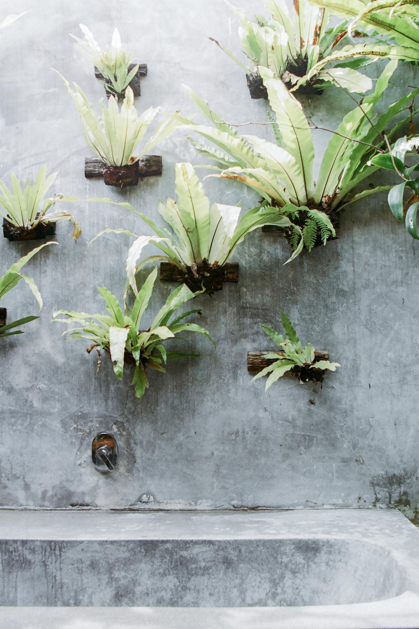 Bali Morgane Erpicum
