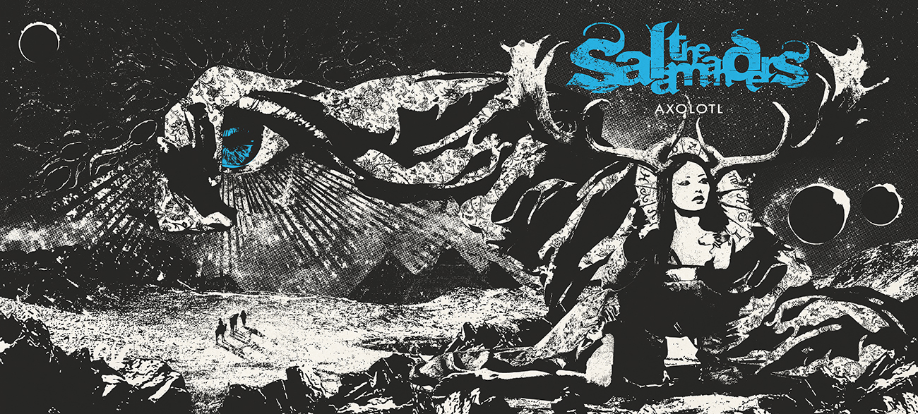 salamanders01.jpg