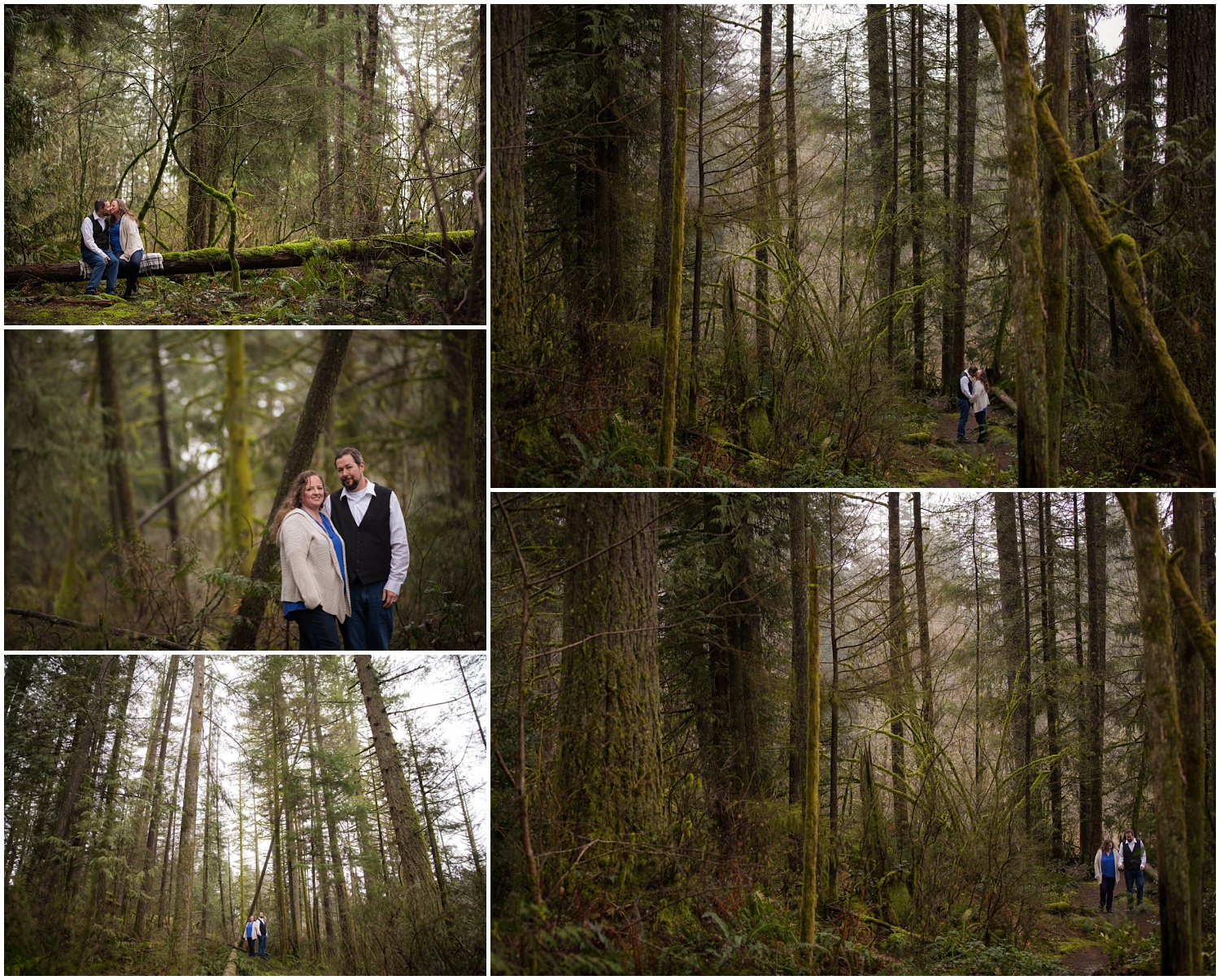 Amazing Day Photography - Minnekhada Engagment Session - Langley Engagement Photographer - Langley Wedding Photographer - Coquitlam Engagement Session (10).jpg