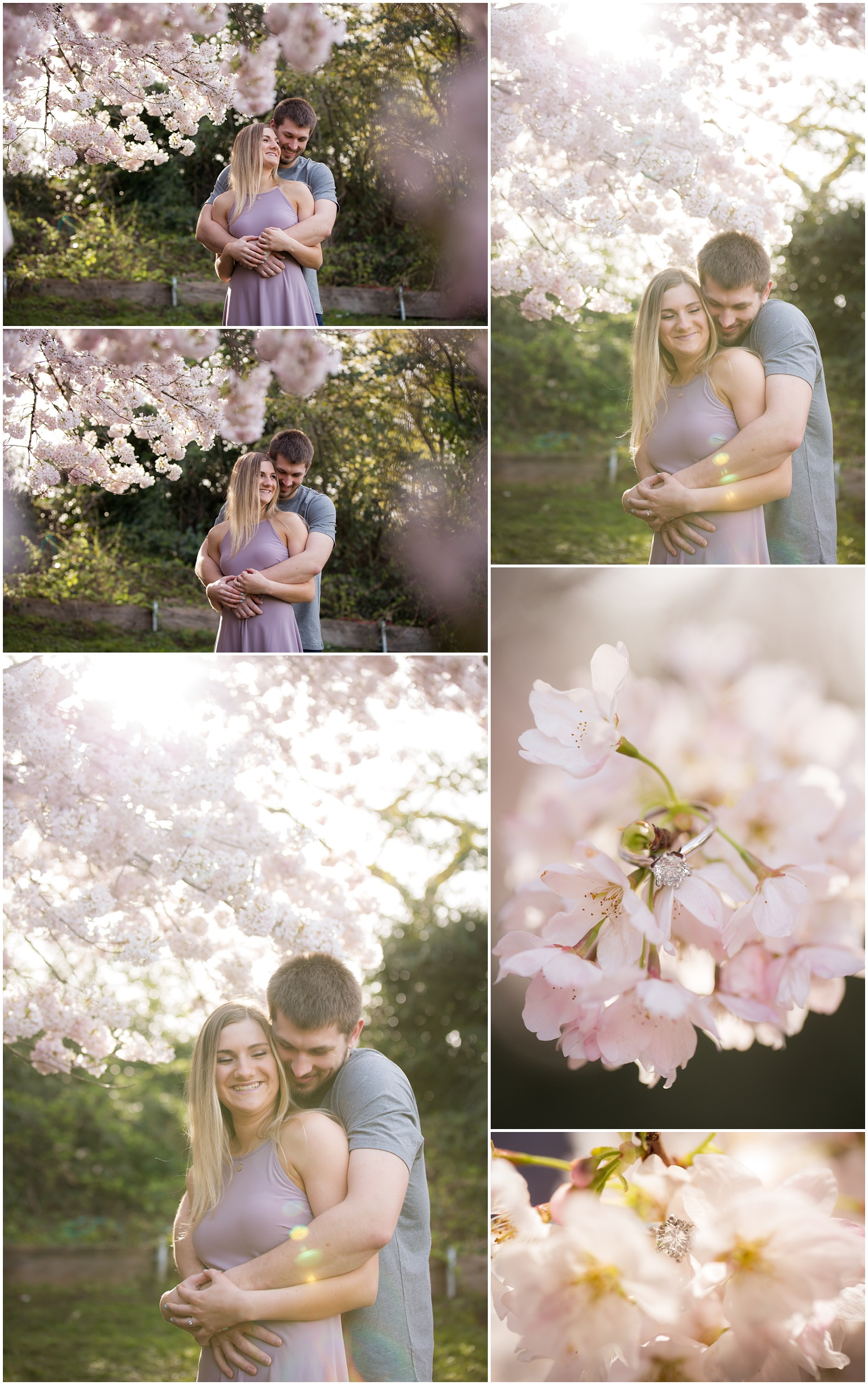 Amazing Day Photography - Cherry Blossom Engagement Session - Queen Elizabeth Park Engagement Session - Vancouver Engagement Photographer  (2).jpg