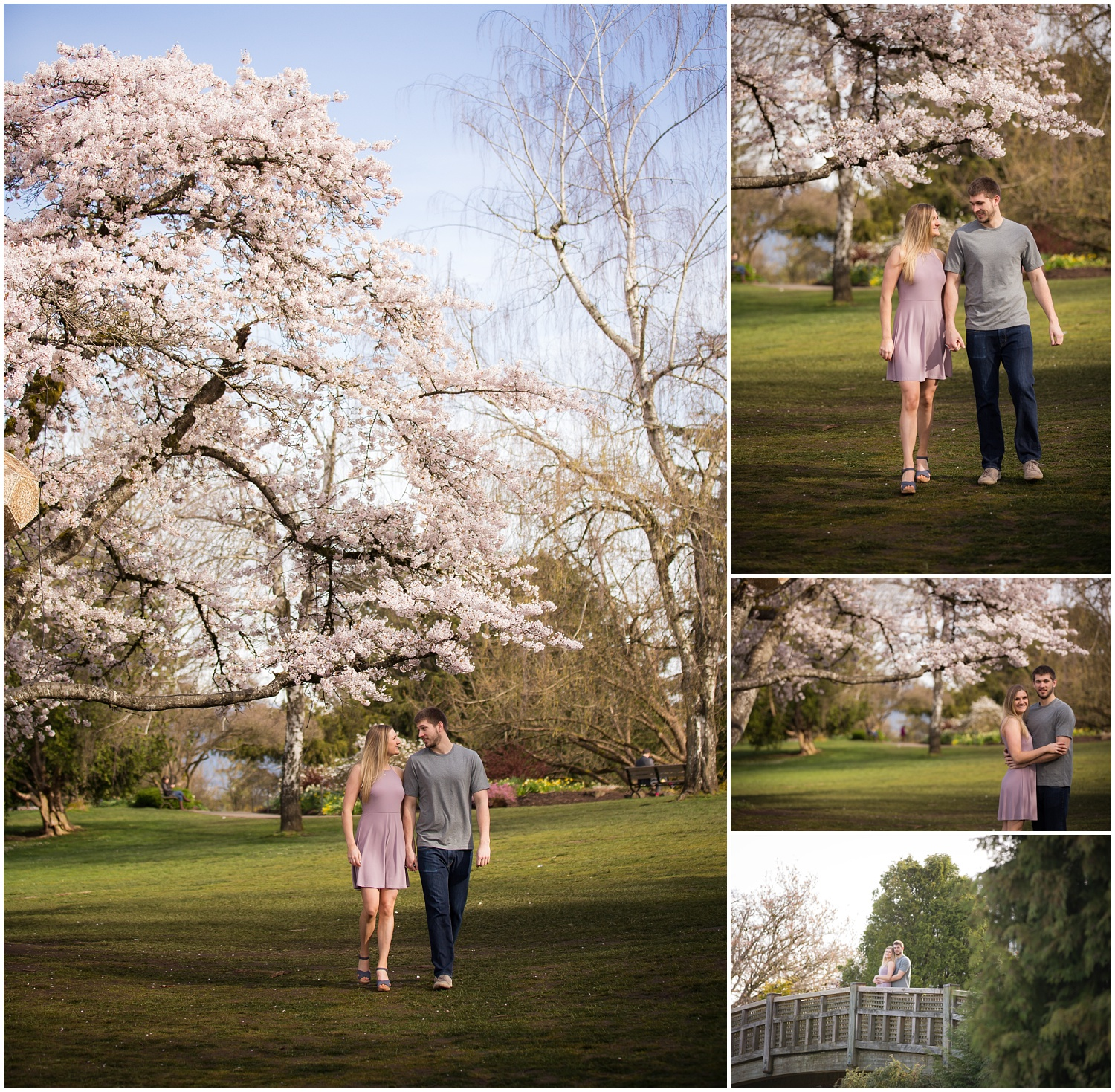 Amazing Day Photography - Cherry Blossom Engagement Session - Queen Elizabeth Park Engagement Session - Vancouver Engagement Photographer  (3).jpg