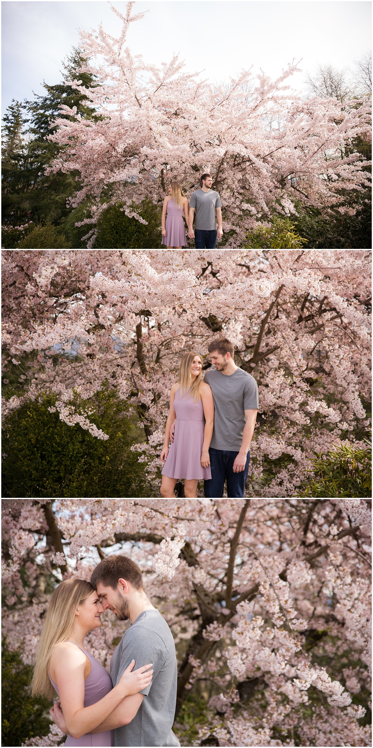 Amazing Day Photography - Cherry Blossom Engagement Session - Queen Elizabeth Park Engagement Session - Vancouver Engagement Photographer  (12).jpg