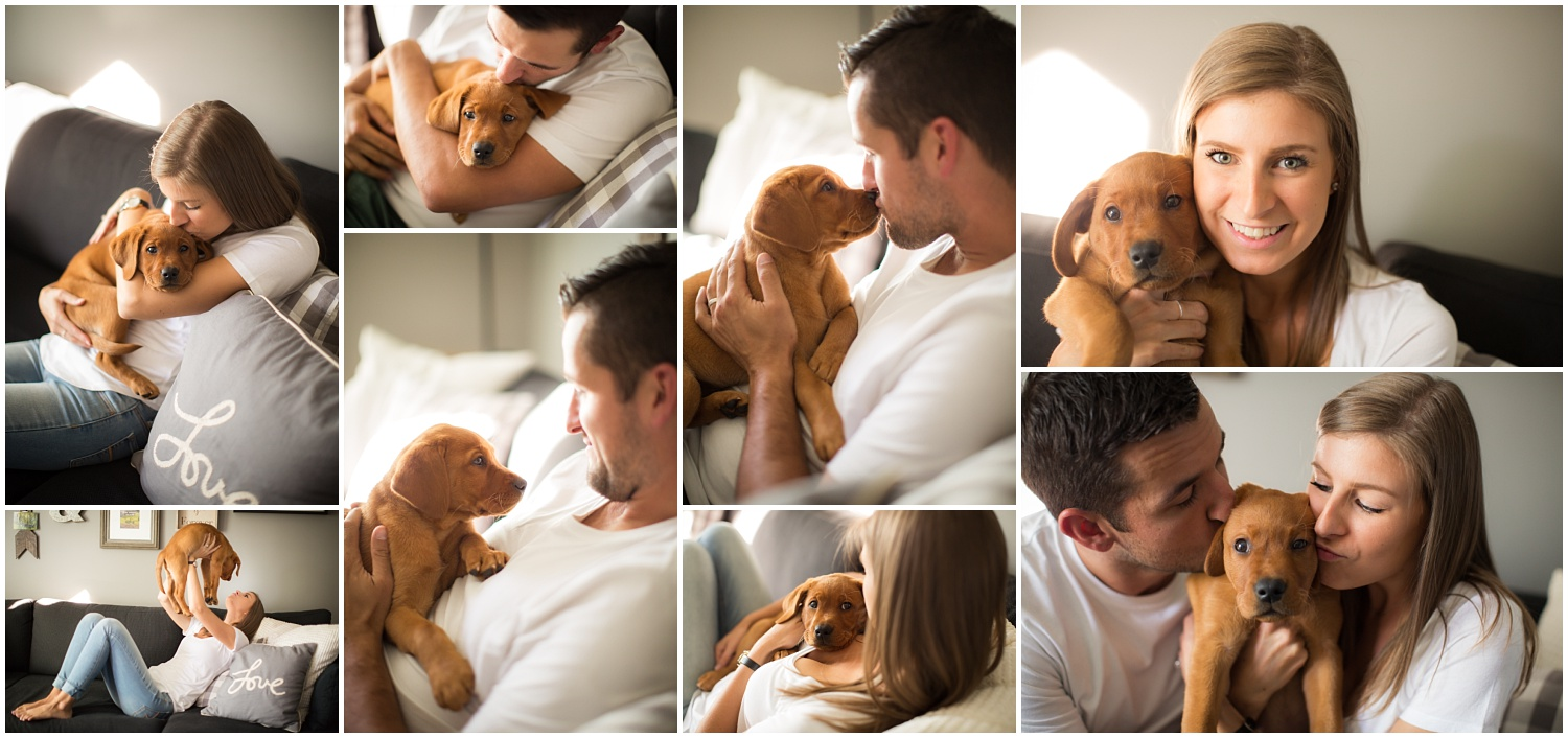 Amazing Day Photography - Puppy Newborn Session - Lifestyle Newborn Session - Dog Photographer (8).jpg
