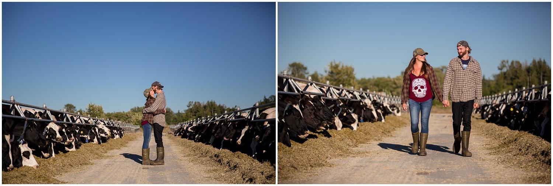 Amazing Day Photography - Dairy Farm Engagement Session - Langley Engagement Photographer (1).jpg