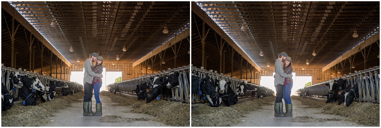 Amazing Day Photography - Dairy Farm Engagement Session - Langley Engagement Photographer (3).jpg