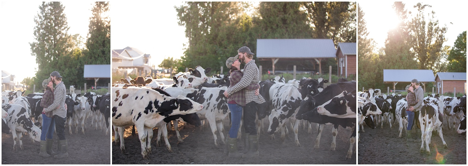 Amazing Day Photography - Dairy Farm Engagement Session - Langley Engagement Photographer (7).jpg