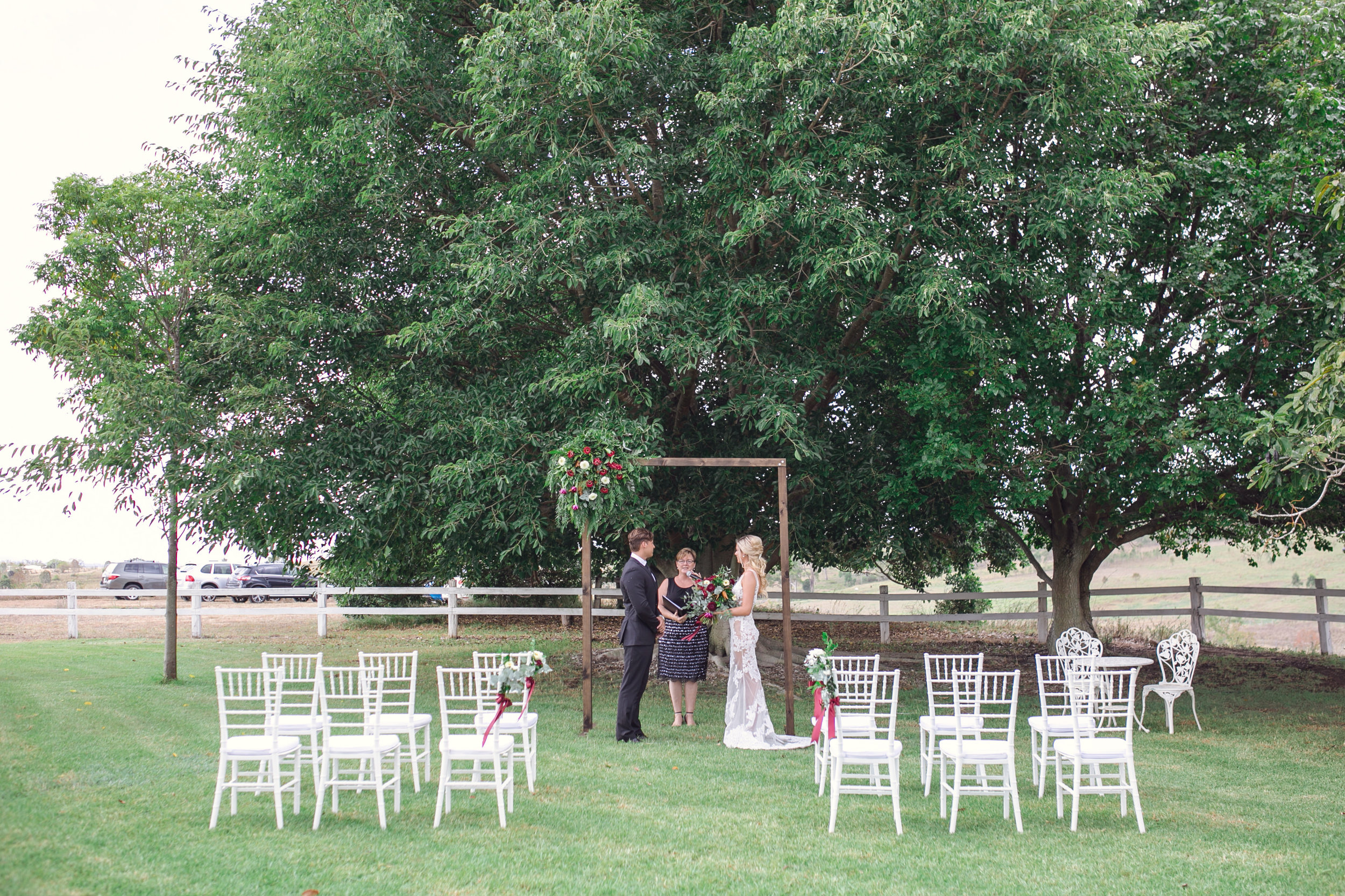 Fig tree ceremony -