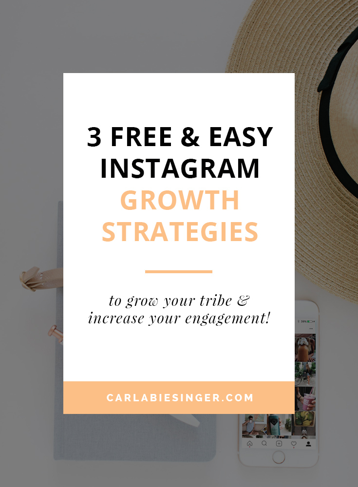 3 free & easy Instagram strategies to grow your tribe WITHOUT spending all day on the app! Carla Biesinger #Instagramtips #bloggingtips