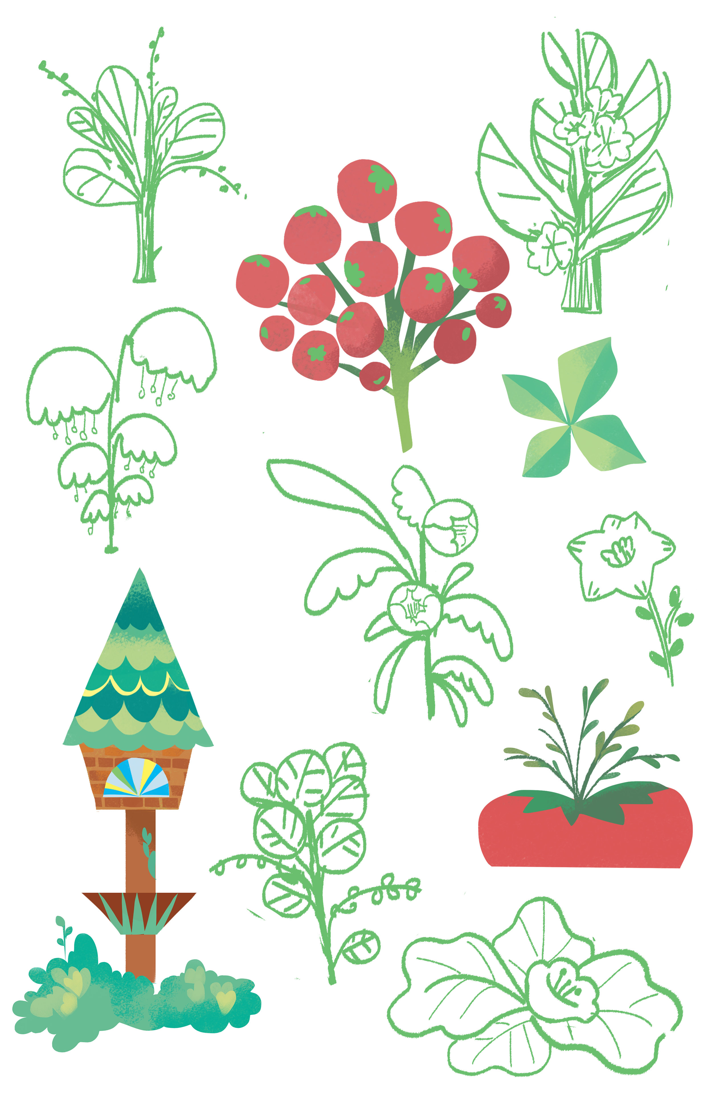 plant study2.jpg