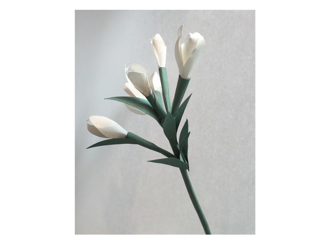 Piękne kwiaty dla Window Stories wykonało warszawskie studio Paper Heroes.