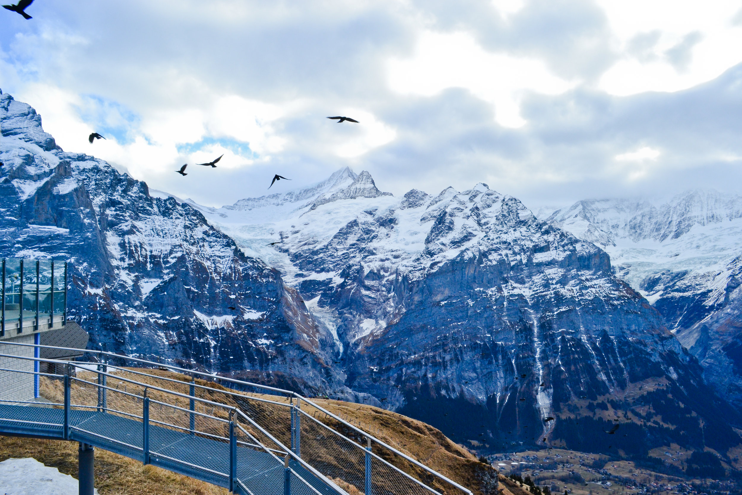Grindelwald-5.jpg