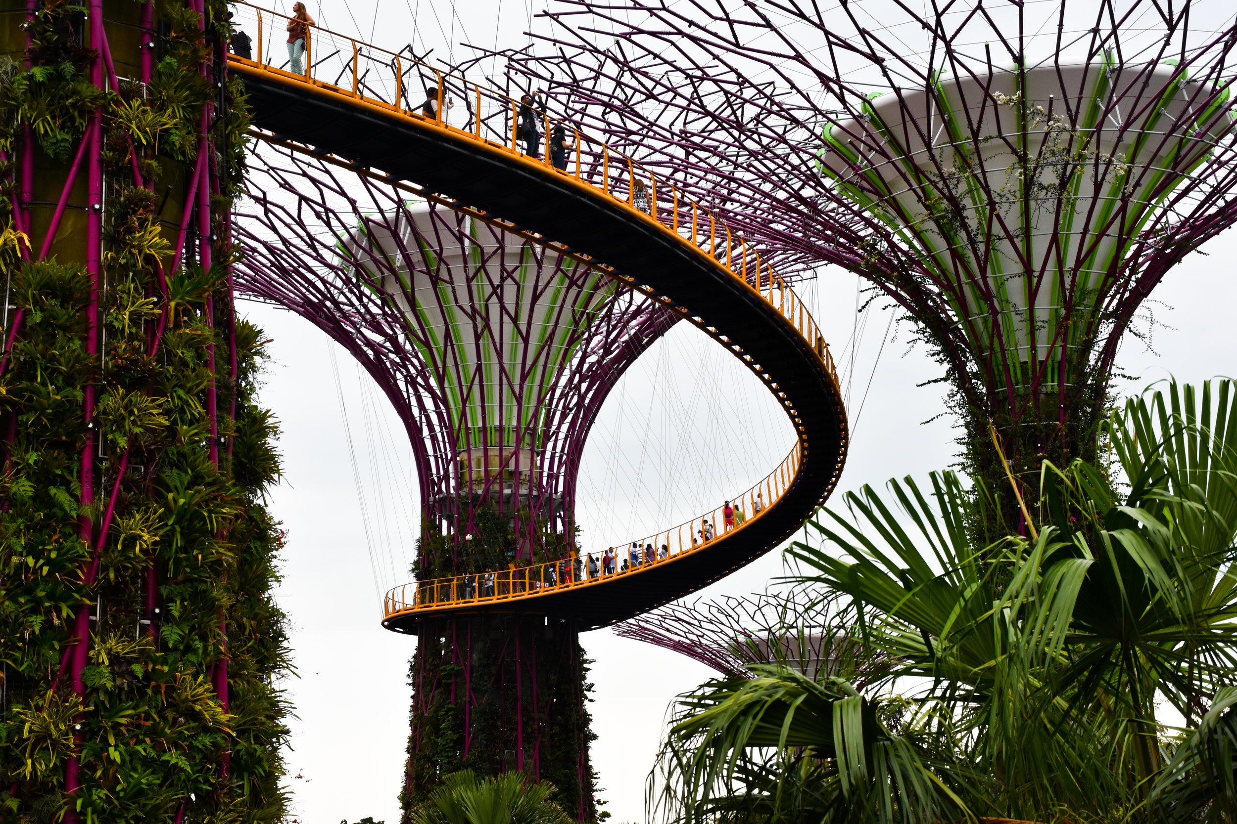 Singapore-11.jpg