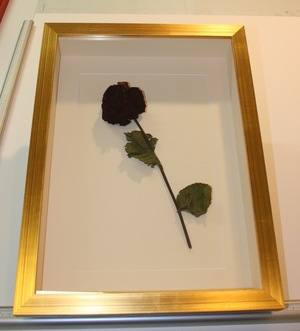 hampshire-picture-framing-3d-008.jpg