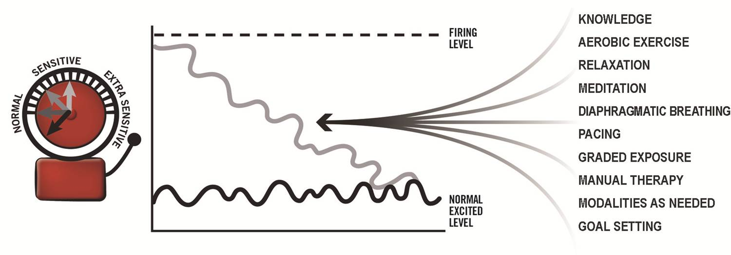 Figure 3: Some of the factors that have been shown to desensitise the alarm once activated.  *Image kindly reproduced with permission from Louw & Puentedura (2013).