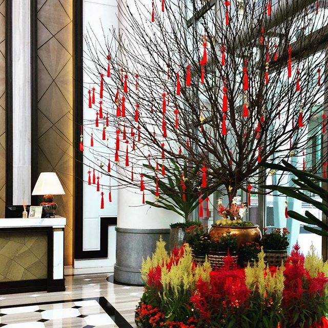 Happy Valentine's Day ❤️ Another shot of the stylish @fullertonbayhotel 🌿#level21styling #singapore #style #cny #colour #pop #igsg