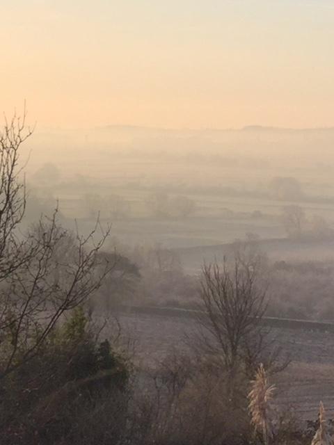 Morning light at Primrose Cottage