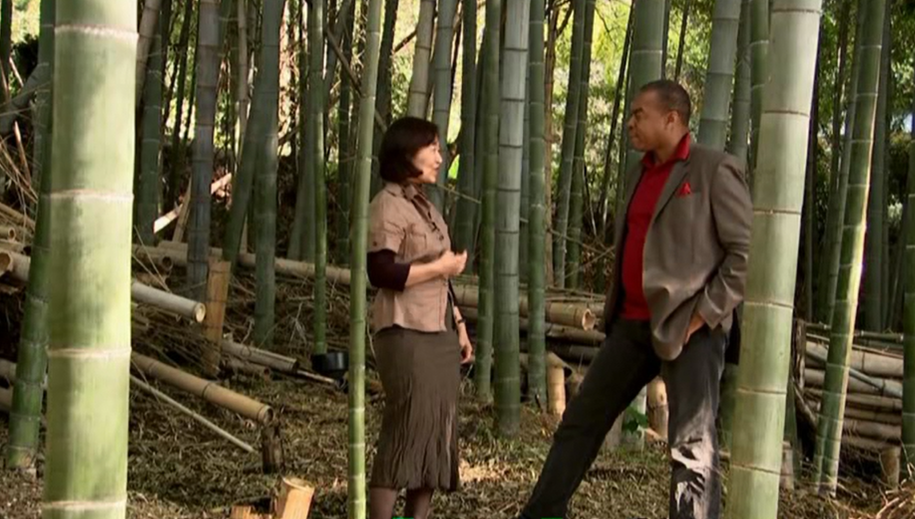 Filming with BBC@ Shorenin-temple, Kyoto in 2008