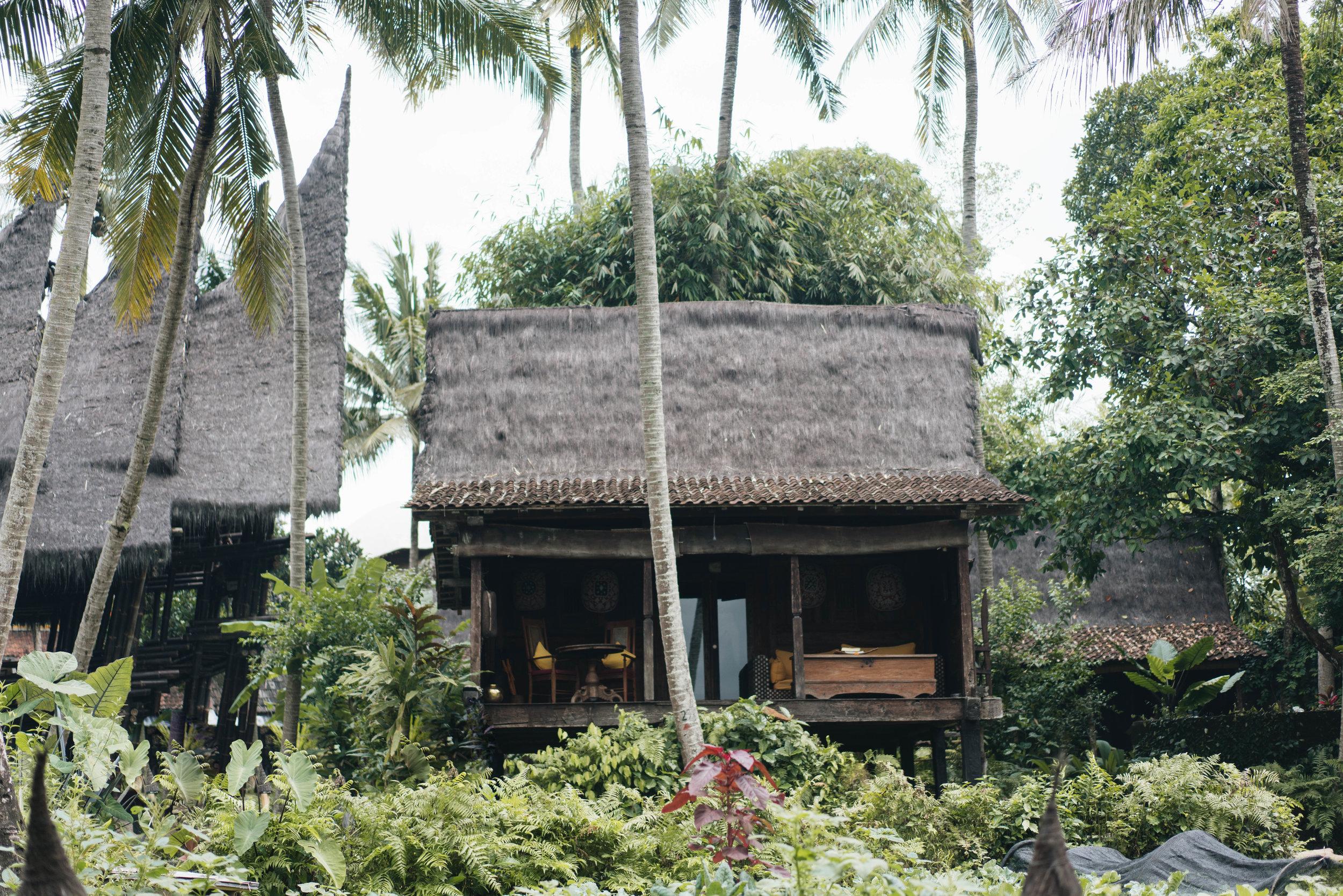 BambuIndah (1 of 1)-2.jpg
