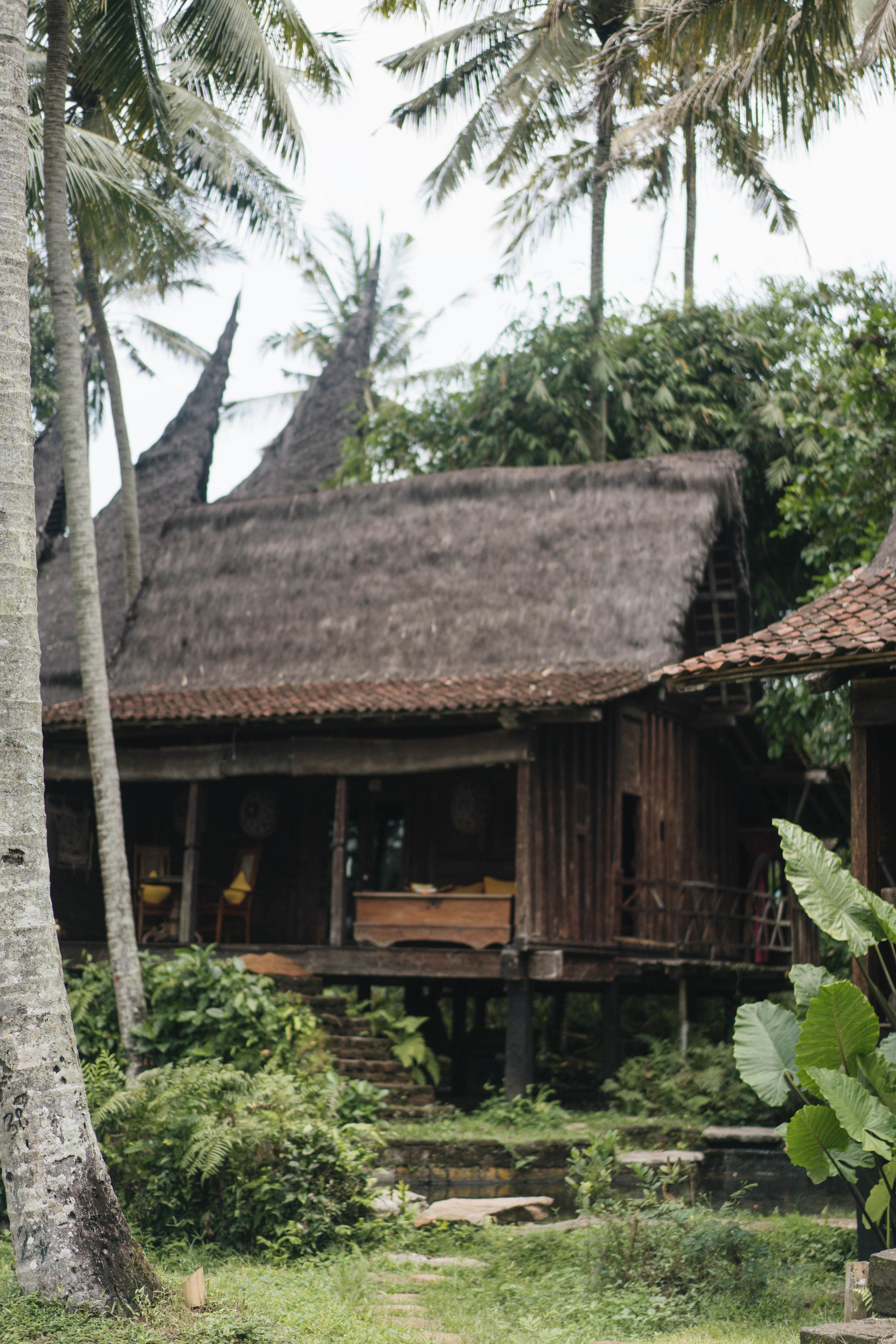 BambuIndah (1 of 1)-3.jpg