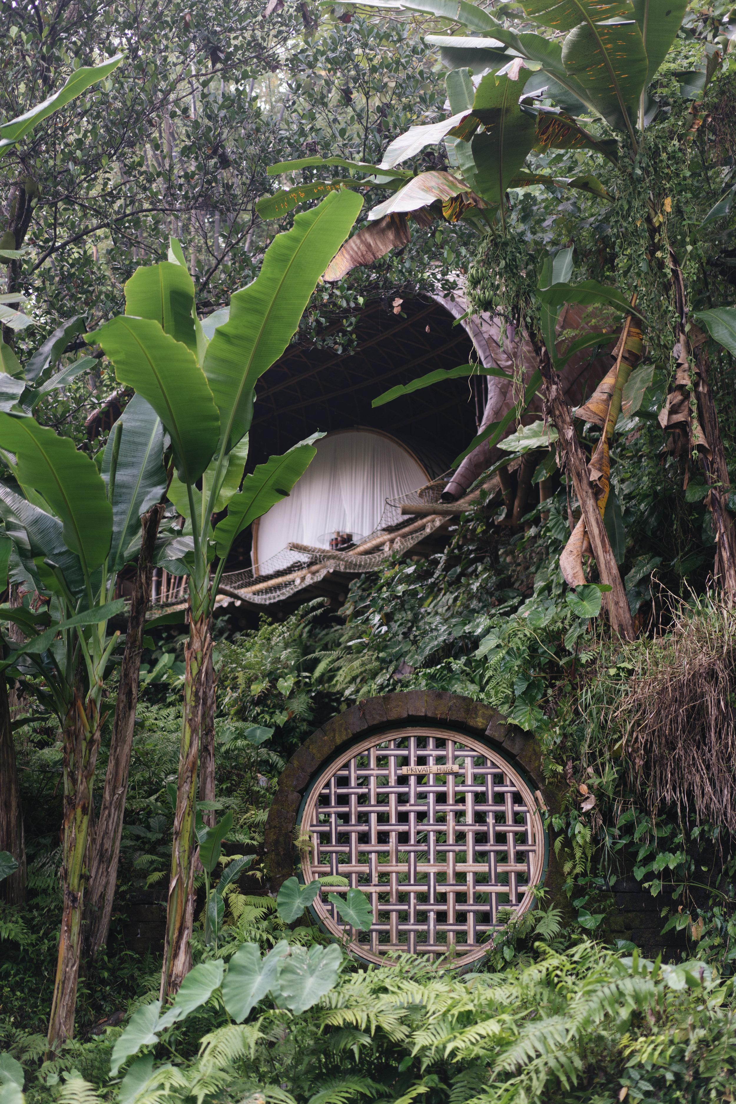 BambuIndah (1 of 1)-16.jpg