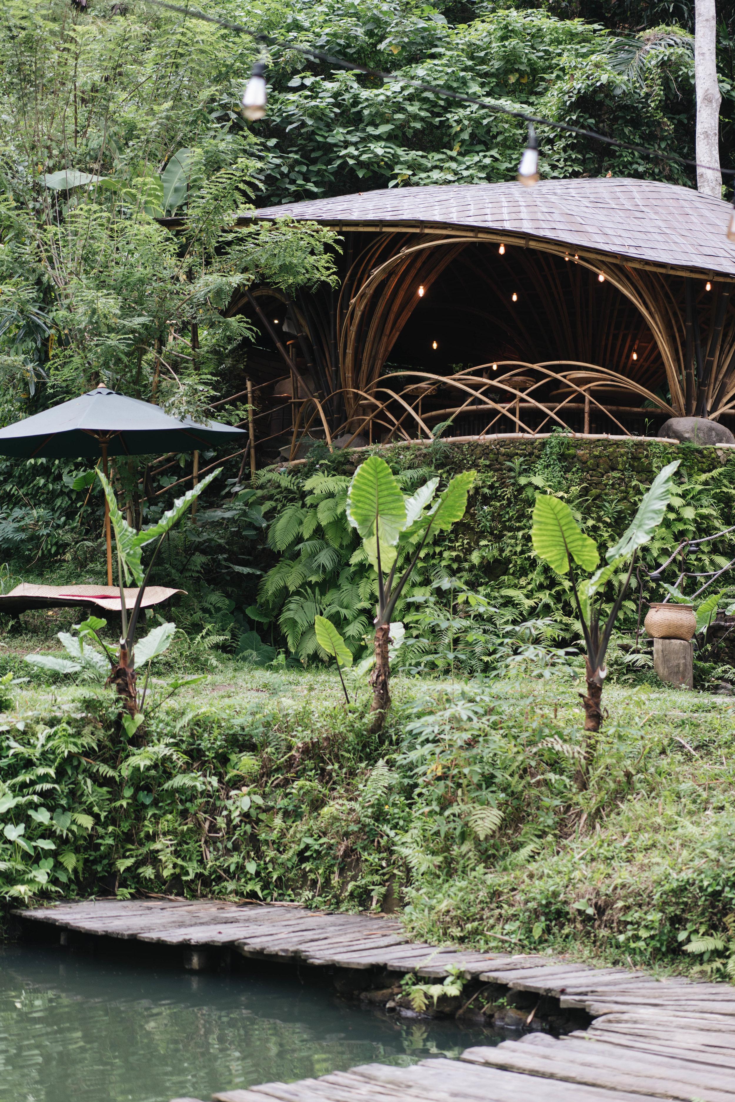 BambuIndah (1 of 1)-26.jpg