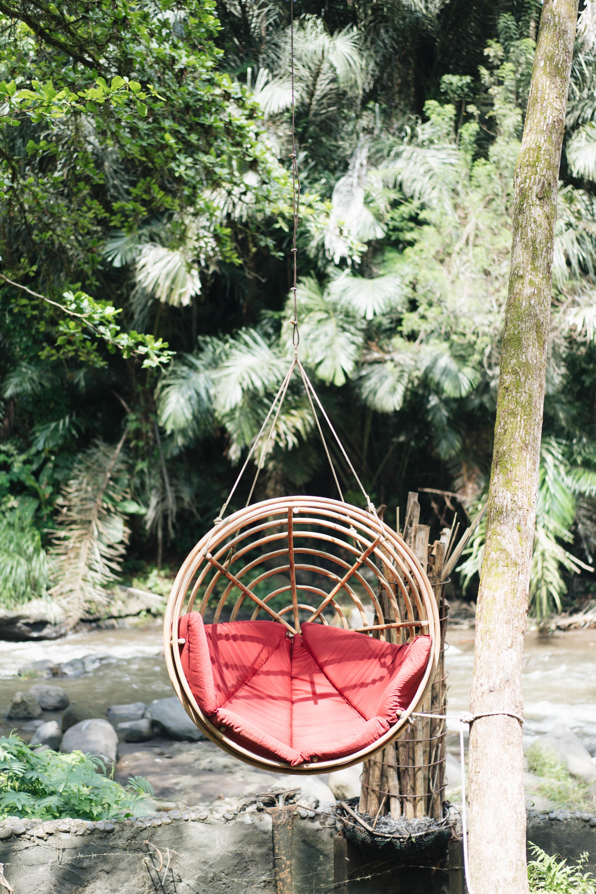 BambuIndah (1 of 1)-25.jpg