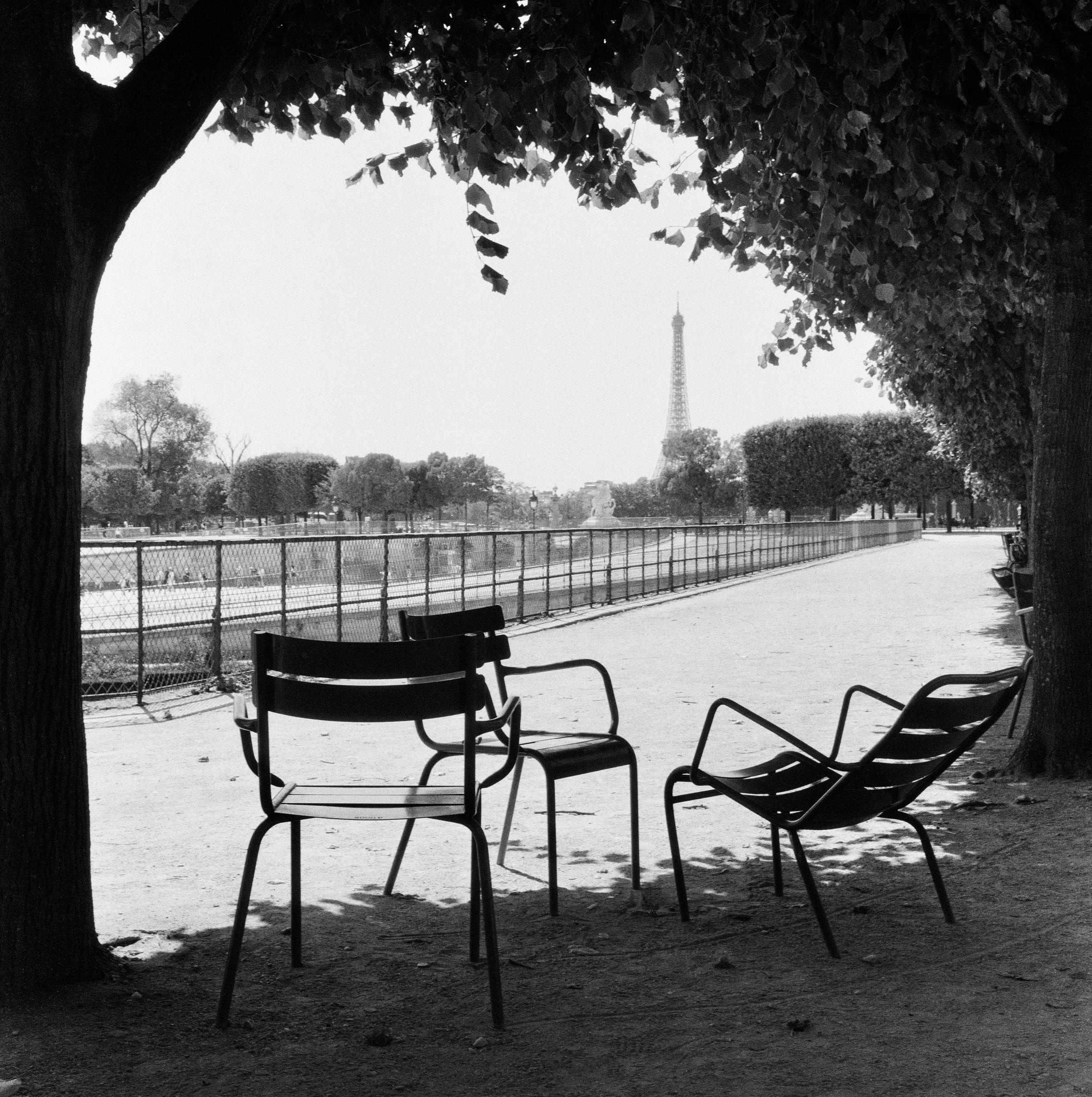 Jardin de Tuileries (2019)