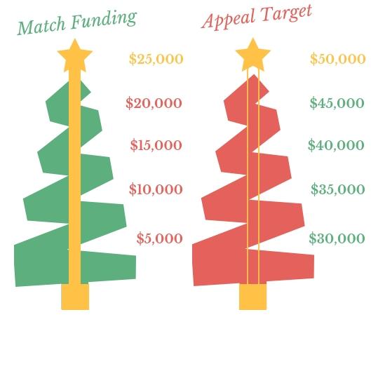 USA Match funding.jpg