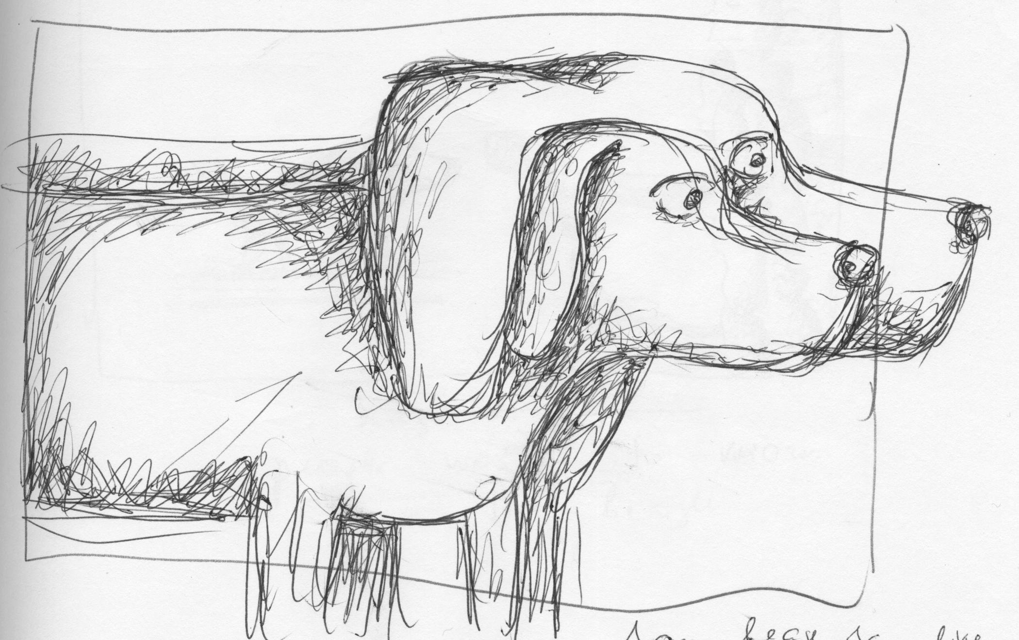 Beagle Ear Wrap.