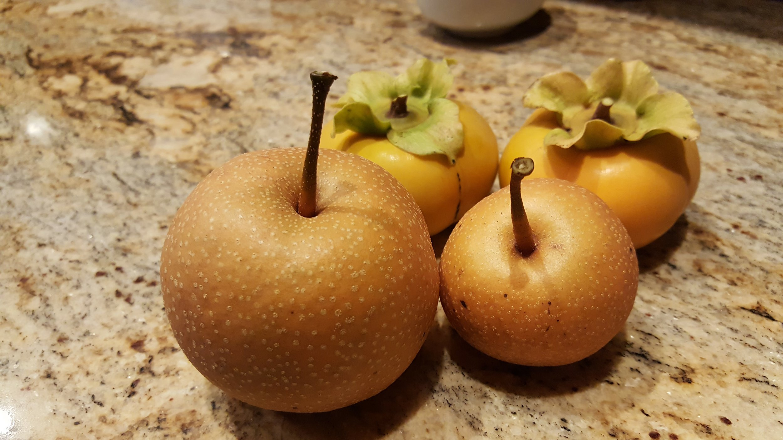 Asian pears and persimmons from our tree