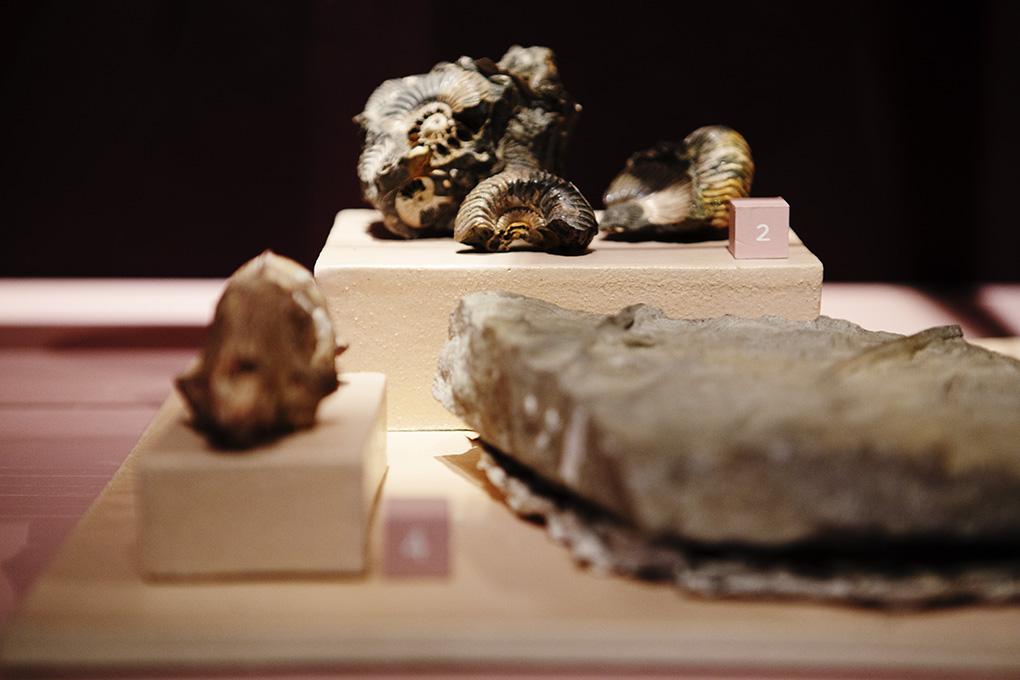Mineraler / Forskning / Samling   NATURHISTORISKA
