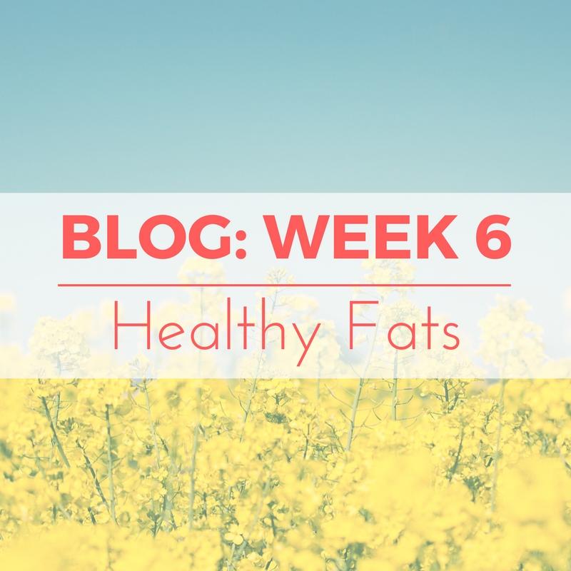 Copy of blog week 6.jpg
