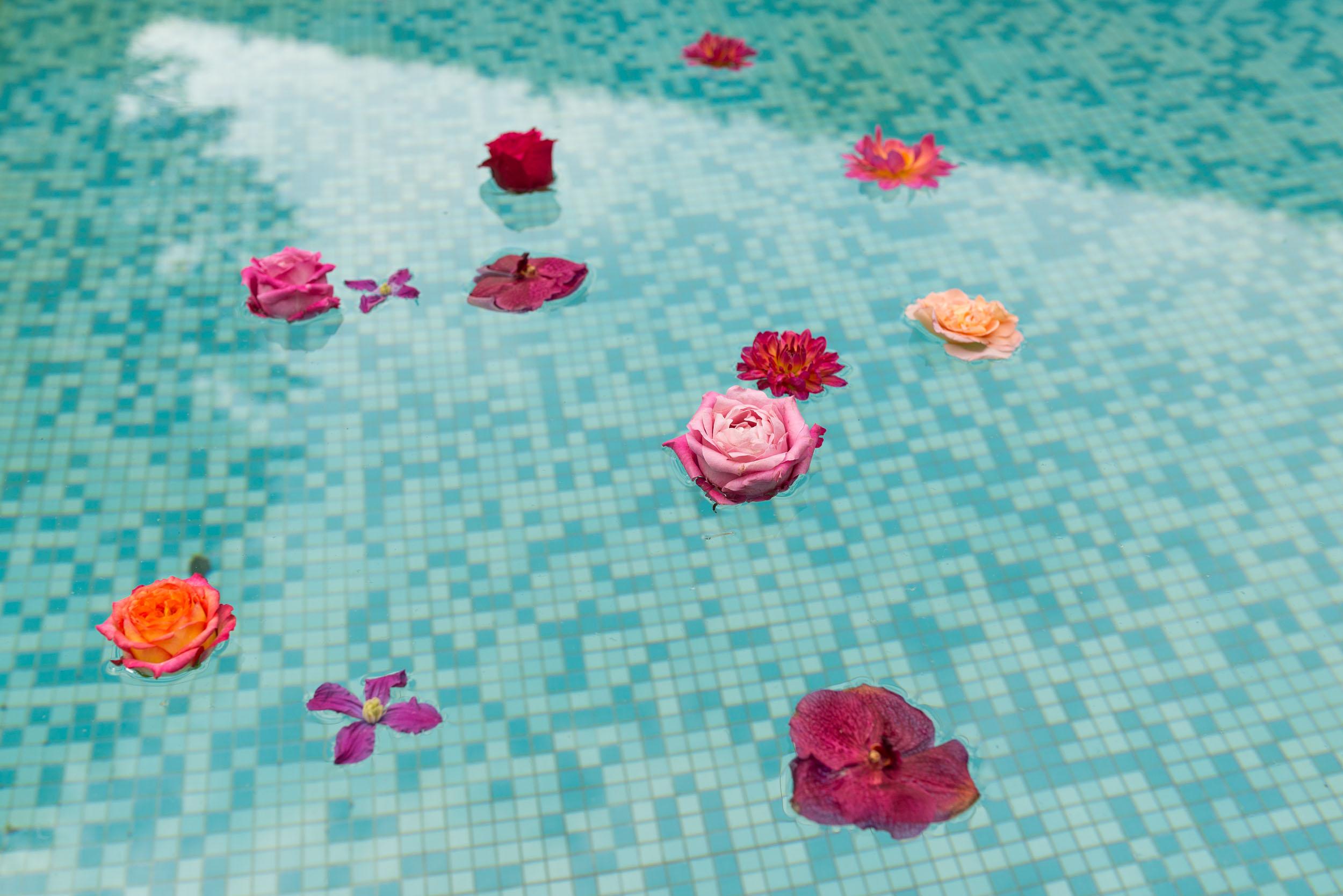 DSC_2274_Flowers_Water.jpg