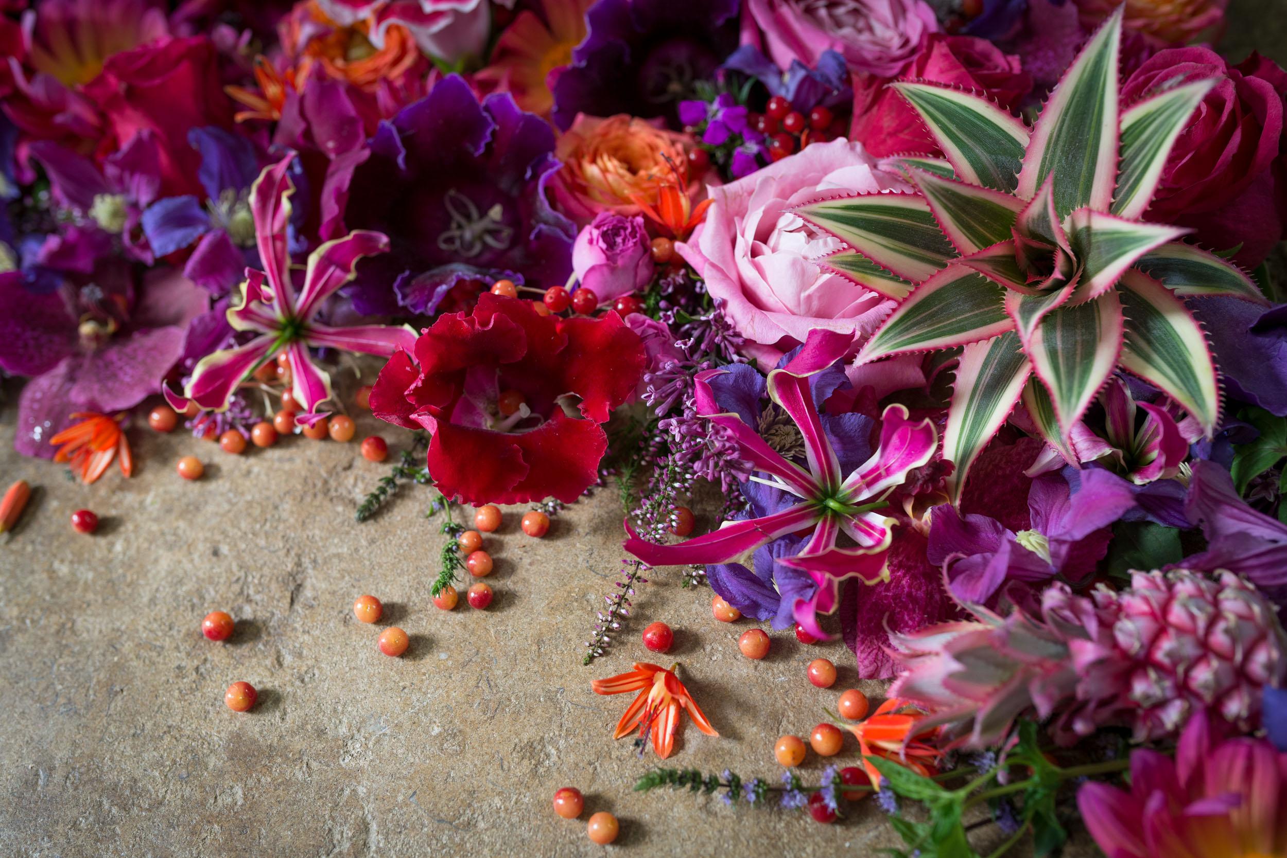 DSC_2179_Flower_Heads.jpg