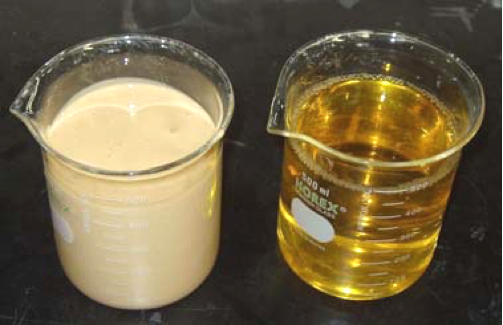 Beer recovery from yeast: Feed (left), filtrate (right)