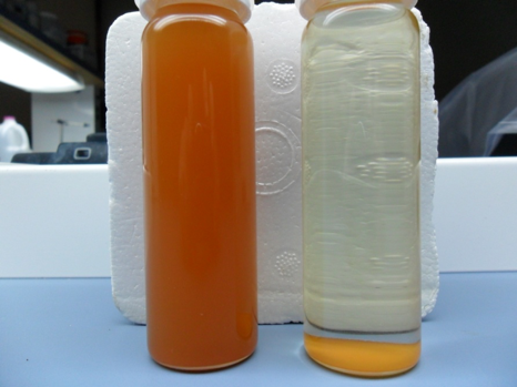 Produced Water: Feed (left) and Permeate (right)