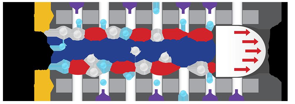 Membrane-Vortex copy.png